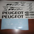 PEUGEOT SPEEDFIGHT 2 rcup