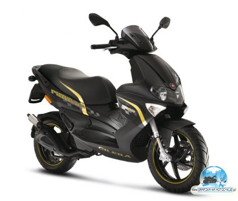 GILERA RUNNER SP50 gold